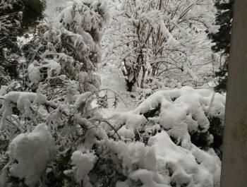 Uroki zimy 10