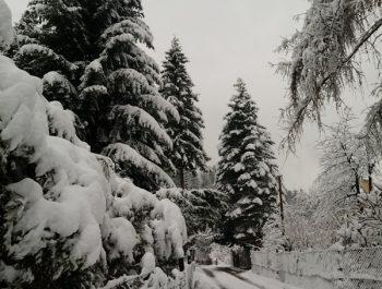 Uroki zimy 12