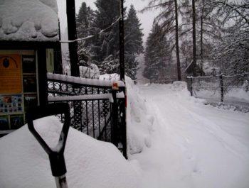 Przyszła śnieżna zima 8