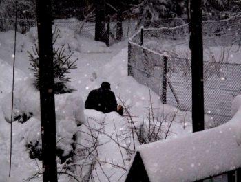 Przyszła śnieżna zima 16