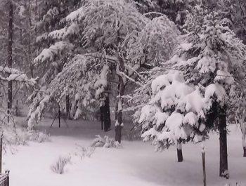 Niezłe początki zimy 7