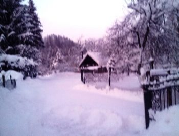 Niezłe początki zimy 10