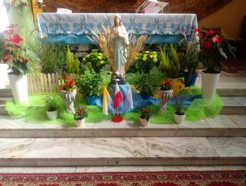 Wniebowzięcie NMP – Matki Boskiej Zielnej